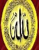 محمود الطوابى